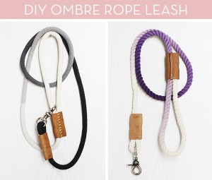 DIY dog leashes, DIY dog accessories