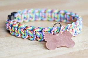 DIY dog collar, homemade dog collar, DIY holiday dog gift