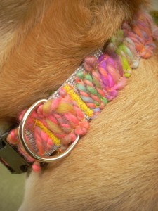 DIY dog collar, homemade dog collar, diy holiday dog gifts