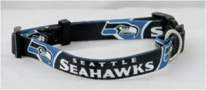 Seattle Seahawks Dog Collar on Bark and Swagger