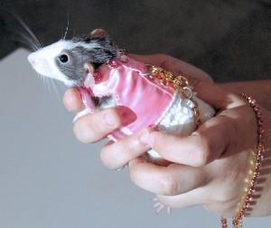 One of Ada's Rat Designs