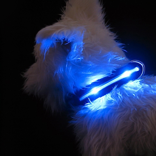 A Light Up Harness The Mhu Ghu Review Bark And Swagger