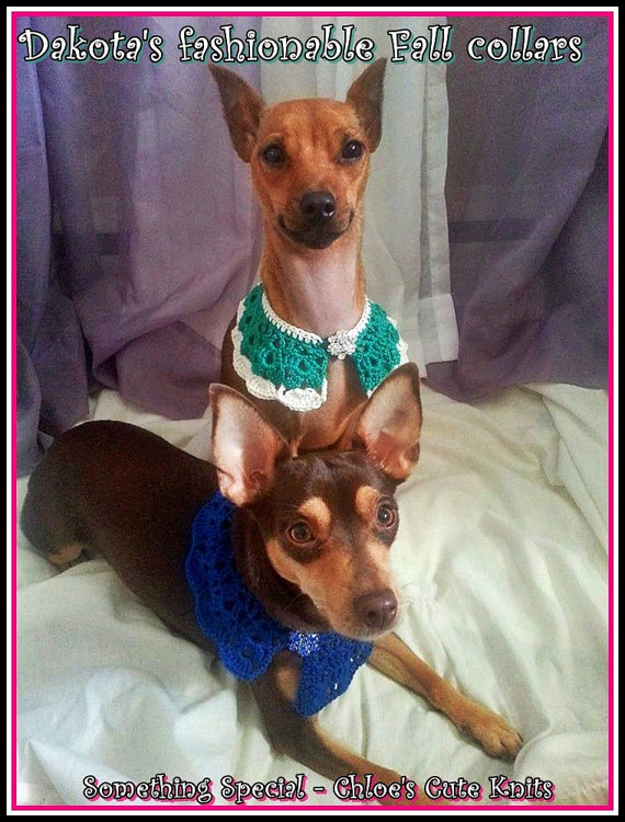 Fall Fashion Trends 2014: Yes, for Dogs! on BarkandSwagger.com