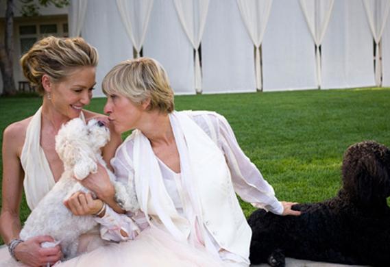 Ellen Degeneres Wedding | Ellen Degeneres Portia Dogs Wedding Bark And Swagger