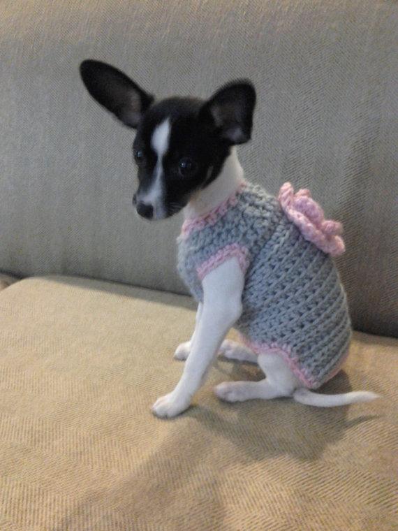 Cutie Grace Crocheted Sweater