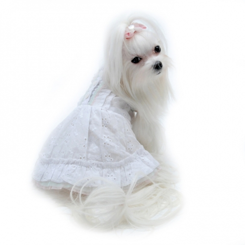 IAPFP May2015-delicate white dress-angel_in_disguise_dog_sundress