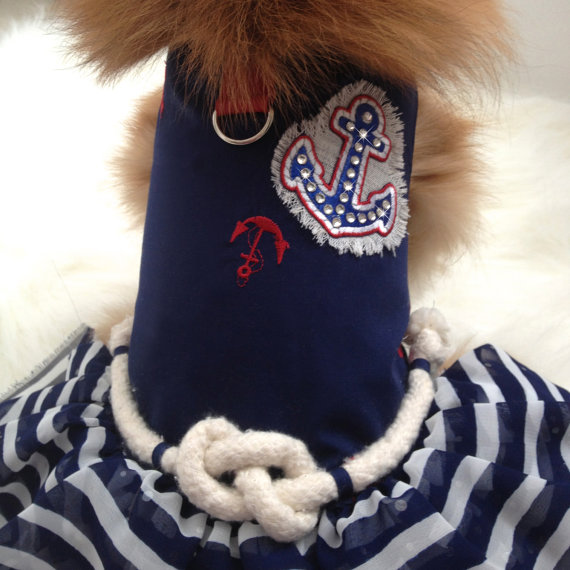 IAPFP June 2015 Jet Setter Dog Dress