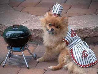 Summer barbecue ideas that include your dogs