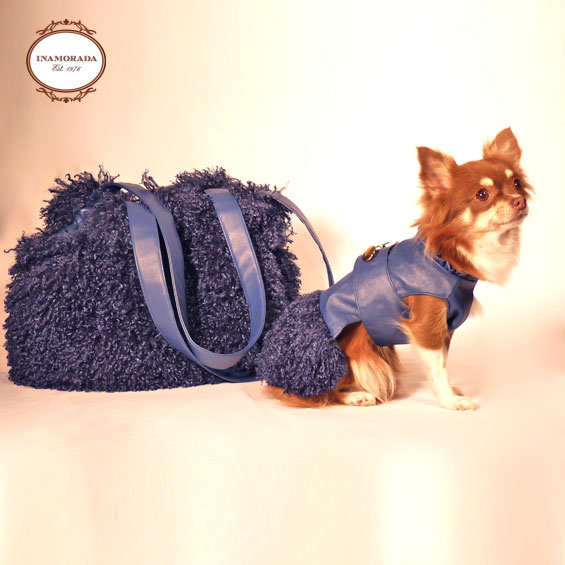 Pet fashion from around the world