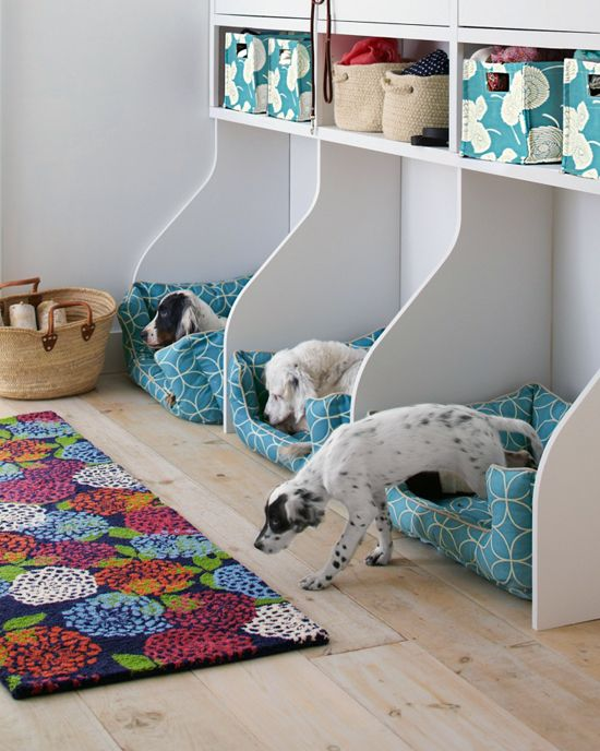 want to know how to design a space for your dog heres one created for - Flooring For Dog Room
