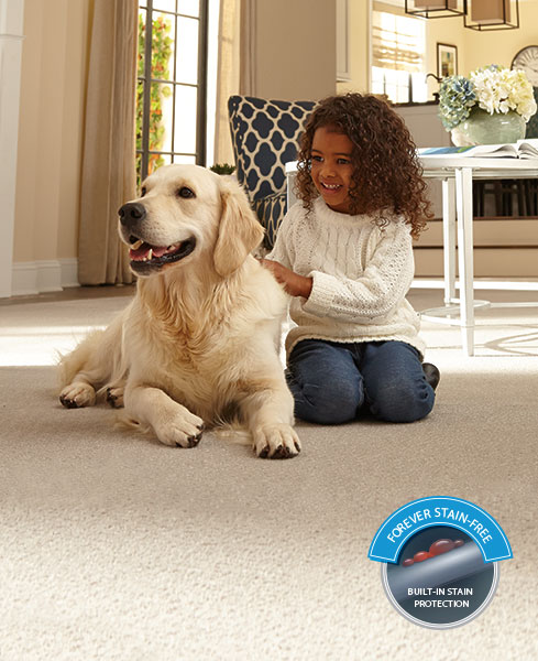 Dog Looks Like A Rug: Home Decor: Have Pets & Want A Smart Carpet Solution